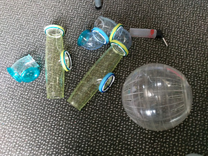 Hamster ball and water bottle