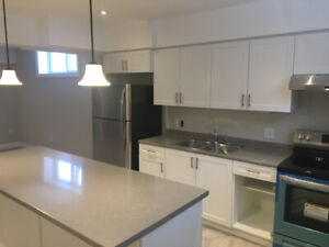 Brand New 2 Bedroom Apartment for Rent