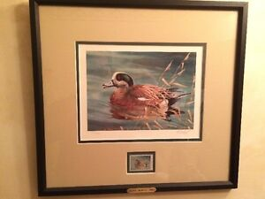 Ducks Unlimited Special
