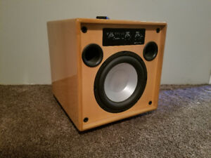 Tantra TS10 250W Powered Subwoofer