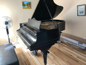 Superb sound and quality. Solid industrial class concert piano.
