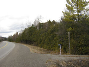 Affordable Acreage with Survey