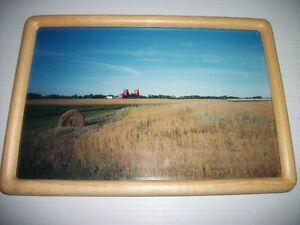 "8"" x 12"" framed photograph of prairie scene"
