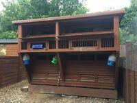 Pigeon loft (shed)