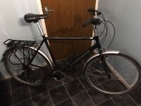 "Ammaco Cosmopolitan 23"" Gents Bike"