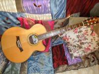 MoonDog Acoustic Guitar Cutaway with Bluestick PickUp Superb !!