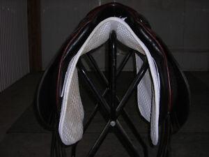 Stubben Dressage Saddle Regina Regina Area image 3