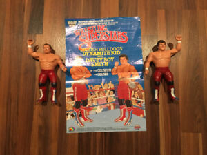 WWF LJN Wrestling Figures with Posters WWE