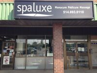 Spa Business For Sale - Fully Furnished