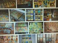 Pokemon cards wanted