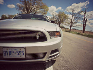 2014 Ford Mustang Club of America/Performance Package *LEATHER*