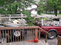 Tree cuting/trimming/removal/lot clearing