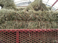 Horse hay , Tinothy mixed grasses, nice hay with no rain on