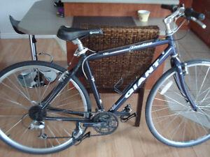 2 vélos Hybrides, Un Bonelli Lite et Un Giant Prodigy