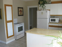BEAUTIFUL SPACIOUS 2 BEDROOMS SUITE FOR RENT