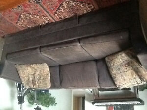 Free pull out couch with throw cushions