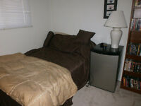 Spruce Grove, 1 Fully Furnished Room, All Util Incl