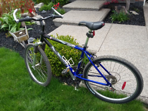 Great ole bike in need of a new home.