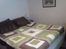Beautiful large furnished room in posh and safe Brunswick Square--Everything included.