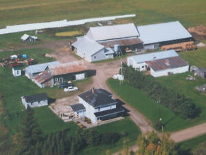 Earlton Farm Property for Sale - 80 acres