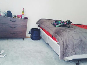 All inclusive december to august sublet! Move in tomorrow! Kitchener / Waterloo Kitchener Area image 2
