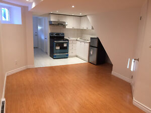 1 Br Basement Apartment  ( Dufferin & St Clair )