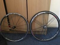 Campagnolo Zonda clinched wheelset