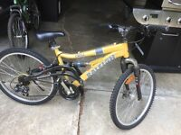 Two unisex bikes 75 each 120 for both good condition