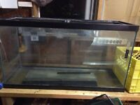 Fish tanks and stuff