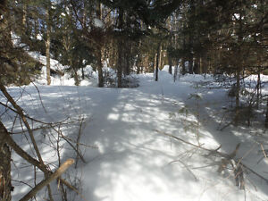 Gorgeous river-front lot in the Laurentians