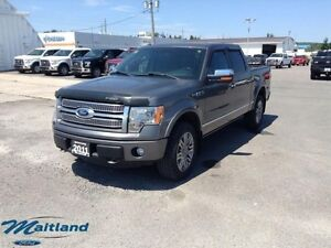 2011 Ford F-150 Platinum  - Leather Seats -  Bluetooth -  Cooled