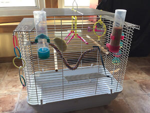 Bird cage for small bird(s) with all accessories and food.