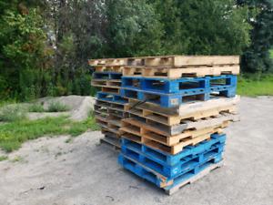 Free wood skids
