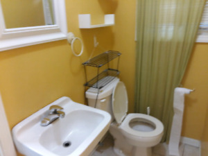 Room for rent with private bathroom in suite accose Cambrian