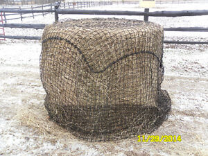 Save your money Save your Hay