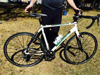 Cyclocross bike - Opus Stelle 2013