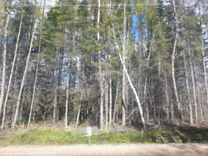 Cottage lot only $24500