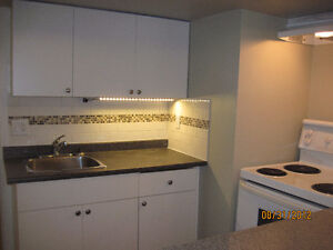 1 Bedroom Basement Suite in a House for Rent (March / April 1st)