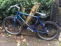 Saracen mountain bike!