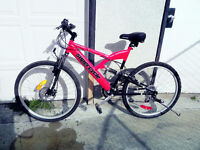 Supercycle Red mountain bike for sale