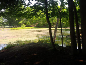 Level and clear 2.5 acre lot - Carrying Place Rd, Cranberry Lake Kingston Kingston Area image 3
