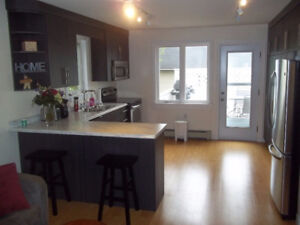 Newly renovated two bedroom apartment - Summerside