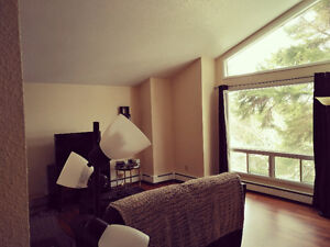 2 bedroom fully furnished large apartment - Clayton Park