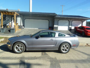 WANTED 2007 /08 Mustang GT for parts. Damaged or complete