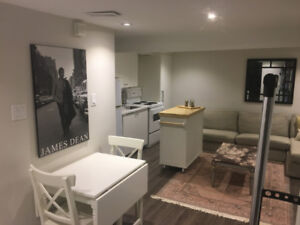 Fully furnished and renovated basement apartment for rent!