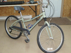 Cannondale Daytripper Dual