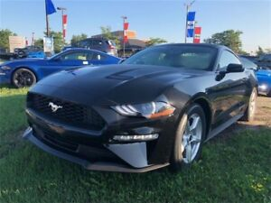 2019 Ford Mustang EcoBoostFastback