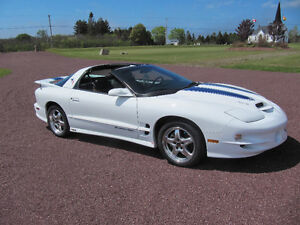TRANS AM  WS6 COUPE T TOP
