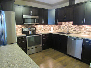 Fully Furnished 3 Bedroom Condo, Everything Included!