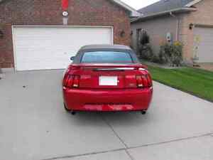 2001 Mustang convertible for sale London Ontario image 3